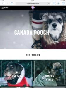 RemixTheDog - Canada Pooch