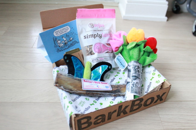 RemixTheDog - BarkBox