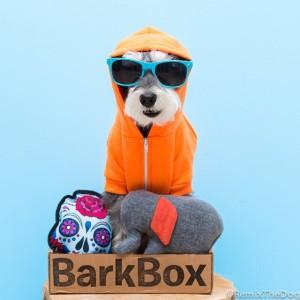 RemixTheDog - BarkBox Coupon Code