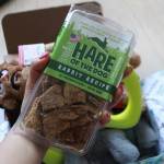 RemixTheDog - July 2015 BarkBox Review