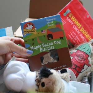 RemixTheDog - August BarkBox Review