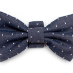 The Willoughby Bow Tie for Dogs