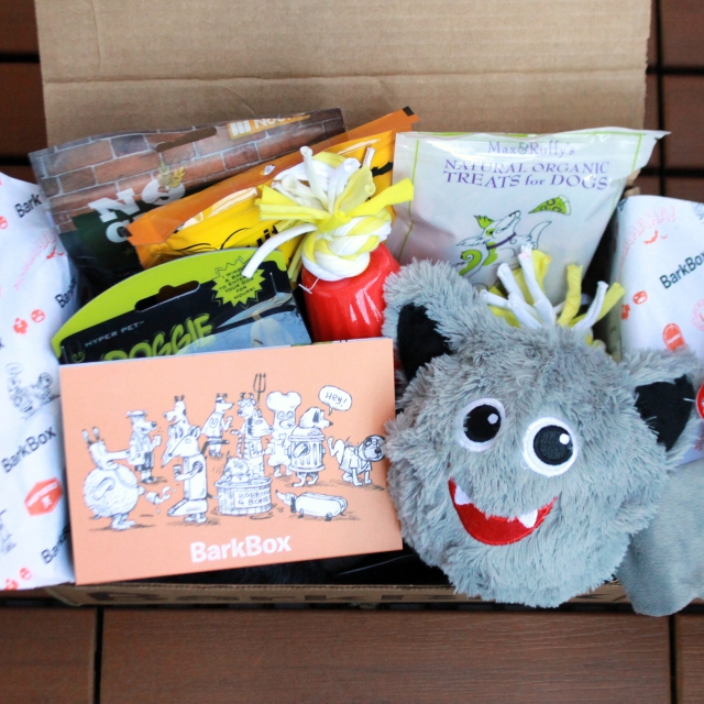 RemixTheDog - October 2015 BarkBox Review