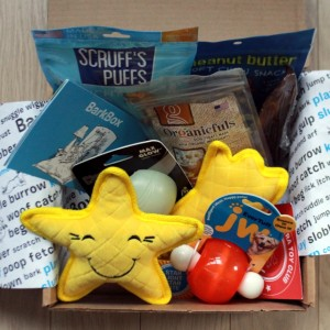 RemixTheDog - September 2015 BarkBox Review