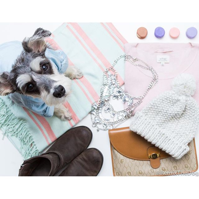 RemixTheDog - 2015 Holiday Gift Guide