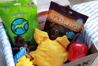 RemixTheDog - 2015 November BarkBox Review