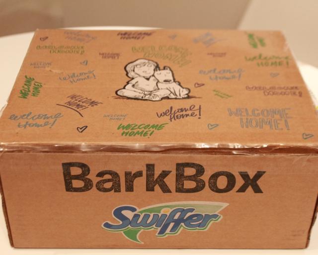RemixTheDog - Swiffer x BarkBox Campaign