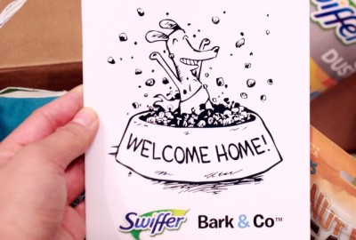 RemixTheDog - Swiffer x BarkBox Campaign