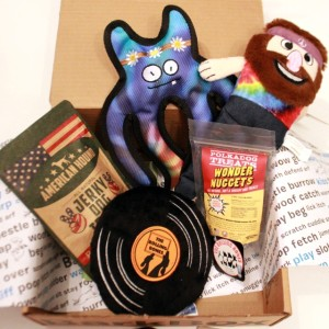 RemixTheDog - BarkBox January 2016 Review