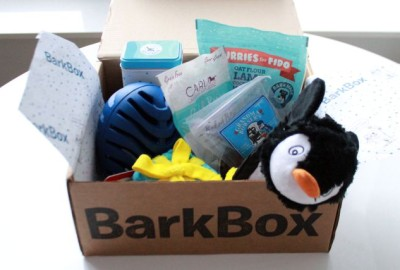 RemixTheDog - BarkBox December 2015 Review