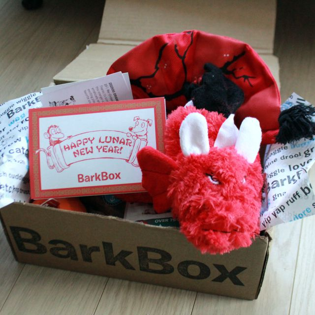 BarkRemixTheDog - BarkBox February 2016 Review
