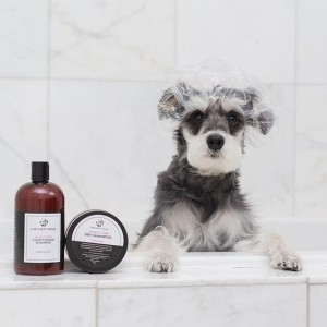 For Dirty Dogs Shampoo Review